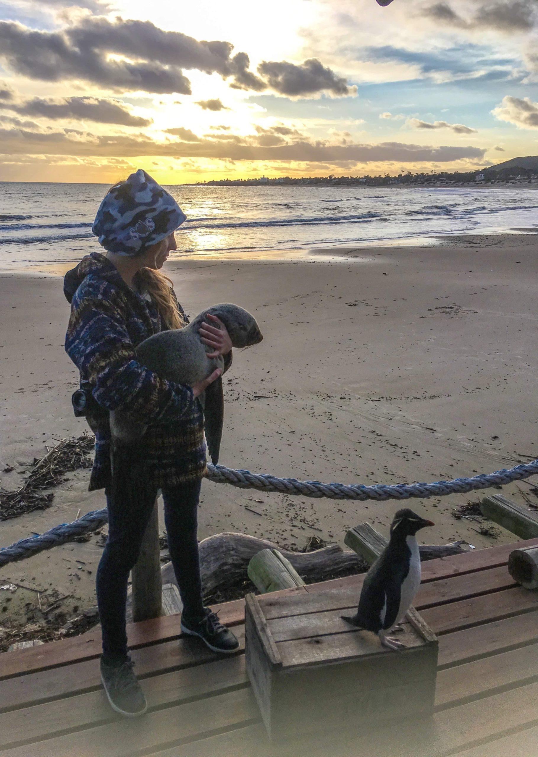 Entre focas y delfines